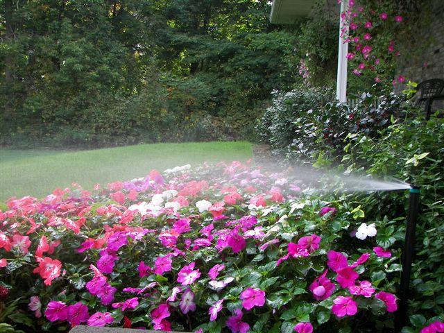 Rosewood irrigation services ltd garden irrigation services for Rosewood garden designs